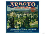 Arroyo Orange Label - Pasadena, CA Prints by  Lantern Press