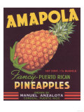 Amapola Pineapple Label - Corozal, PR Prints by  Lantern Press