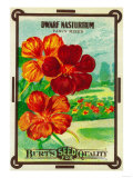 Dwarf Nasturtium Seed Packet Prints by  Lantern Press