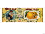 Armona Apricot Label - San Francisco, CA Prints by  Lantern Press