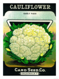 Cauliflower Seed Packet Posters