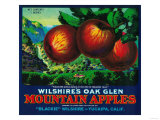 Wilshire's Oak Glen Apple Crate Label - Yucaipa, CA Prints by  Lantern Press