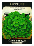 Lettuce Seed Packet Prints by  Lantern Press