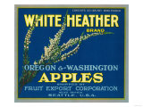 White Heather Apple Label - Seattle, WA Art by  Lantern Press