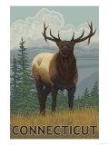 Connecticut - Elk Scene Art by  Lantern Press