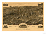 Anniston, Alabama - Panoramic Map Prints