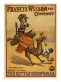 """The Little Corporal"" Camel Egyptian Baby Theatre Poster Prints by  Lantern Press"