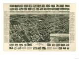 Amityville, New York - Panoramic Map Prints