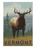 Vermont - Elk Scene Art by  Lantern Press