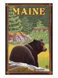 Maine - Black Bear in Forest Prints by  Lantern Press