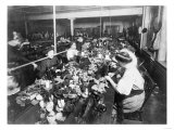Women Working in a Teddy Bear Factory Photograph Art
