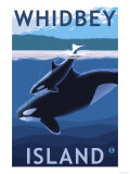 Whidbey Island, Washington - Orca and Calf Prints by  Lantern Press