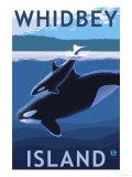 Whidbey Island, Washington - Orca and Calf Prints