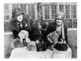 Women with their Persian Cats at Cat Show Photograph - Washington, DC Prints