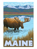 Maine - Moose Drinking in Lake Prints by  Lantern Press