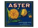 Aster Brand Citrus Crate Label - San Bernardino, CA Prints by  Lantern Press