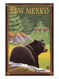 Black Bear in Forest - New Mexico Prints by  Lantern Press