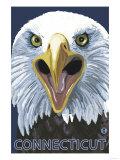 Connecticut - Eagle Up Close Prints