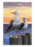 Connecticut - Sea Gulls Scene Prints