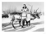 Alaska View of man and Reindeer Sled Team Photograph Prints by  Lantern Press