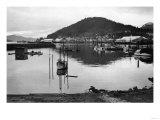 Wrangell, Alaska Town View of Fishing Boats Photograph - Wrangell, AK Prints by  Lantern Press