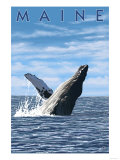 Maine - Humpback Whale Scene Prints by  Lantern Press