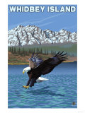 Whidbey Island, Washington - Eagle Fishing Kunstdrucke