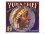 Yuma Chief Orange Label - Redlands, CA Prints
