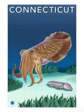 Connecticut - Cuttlefish Scene Prints by  Lantern Press