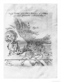 The Comet Discovered and Observed by Johannes Hevelius, 3rd February to 28th March 1661 Giclee Print by Johann Hevelius
