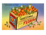A Crate of Oranges From Florida Posters