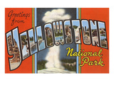 Greetings from Yellowstone Park, Montana Posters