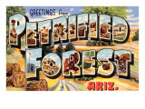 Greetings from Petrified Forest, Arizona Print