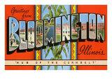 Greetings from Bloomington, Illinois Prints