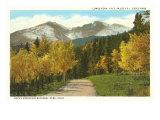 Longs Peak, Estes Park, Colorado Poster