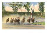 Hialeah Race Track, Miami, Florida Poster