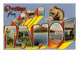 Greetings from Lake Tahoe Prints