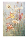 Garden Fairies Prints