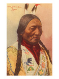 Chief Sitting Bull, Sioux Indian Lámina