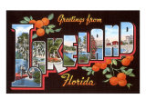 Greetings from Lakeland, Florida Posters