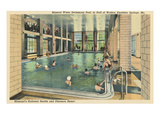 Swimming Pool, Excelsior Springs Prints
