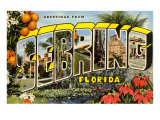 Greetings from Sebring, Florida Prints