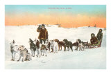 Sled Dog Team Posters