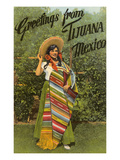 Greetings from Tijuana, Senorita in Sarape Prints