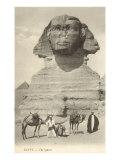 Sphinx, Giza, Egypt Poster