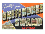 Greetings from Okefenokee Swamp, Georgia Posters