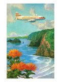 Airliner over Hawaii Posters