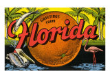 Greetings from Florida Print