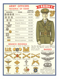 Army Officers Insignia Art