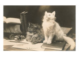 The Bookkeepers, Cats on Desk Posters